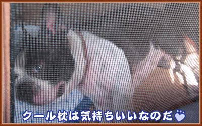 07_09_12_13.jpg