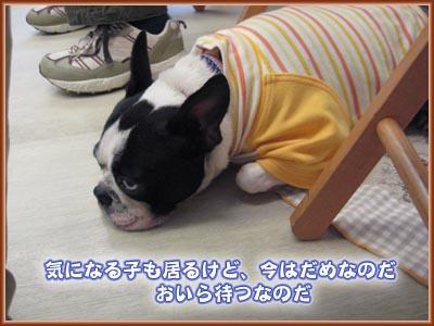07_09_18_06.jpg