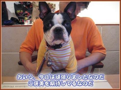07_09_18_11.jpg