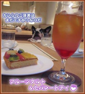07_09_18_12.jpg