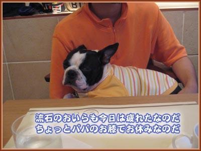 07_09_18_13.jpg