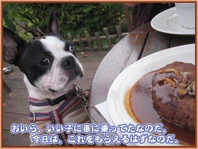 07_09_26_02.jpg