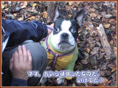 07_10_01_07.jpg