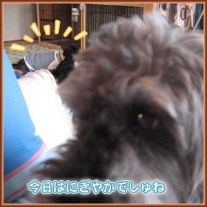 07_10_08_01.jpg
