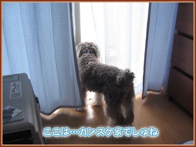 07_10_08_05.jpg