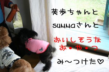 芙歩ちゃん+まろん