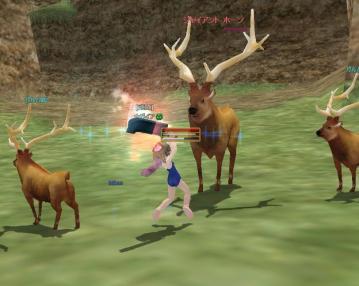 鹿肉ですよー