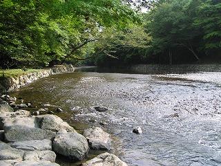 miyama11