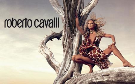 cover_roberto_cavalli_2006_.jpg
