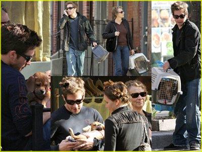 jake-gyllenhaal-dog-maggie.jpg