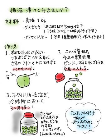 梅酒の作り方