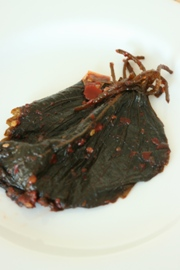 kimchi15