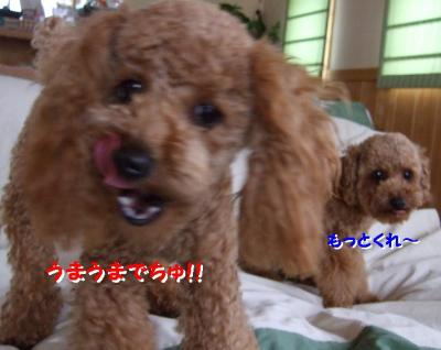 20070621135600.jpg