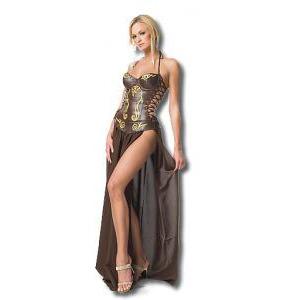 奴隷のお姫様の衣装
