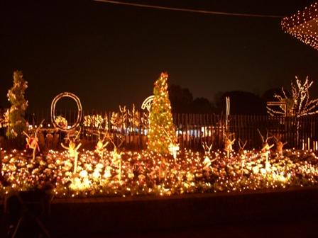 昭和記念公園入口