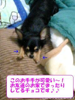 20071112094658.jpg