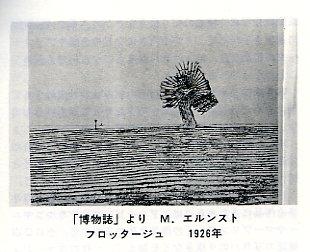 File0244.jpg