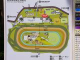 東京競馬場01