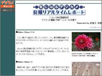 topic0227.jpg