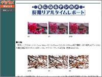 topic0580.jpg