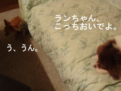 tikuwa7.jpg