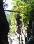 ジッピの上には吊り橋が