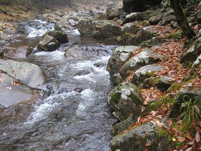 特号の流れと河原