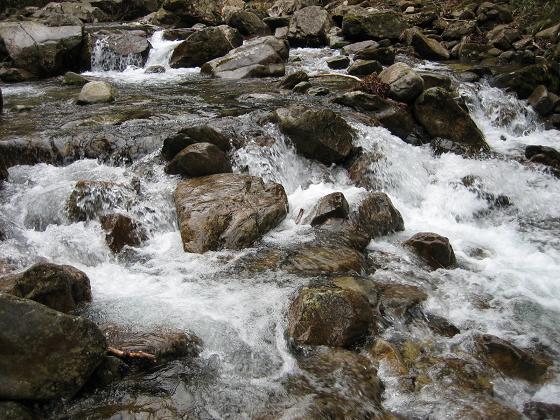 栗島川の流れ