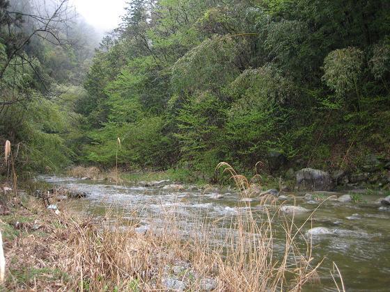小川の入渓点