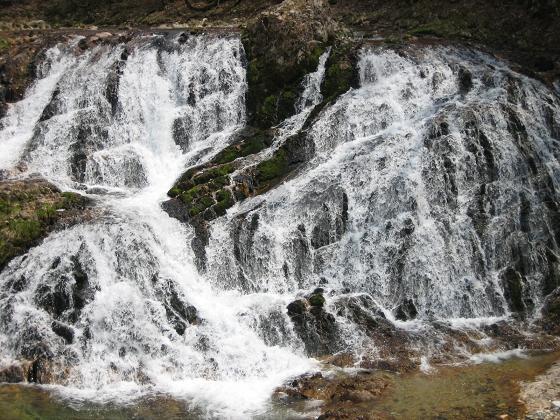 庄川魚止めの滝