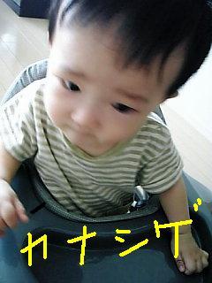 Image1035.jpg