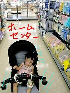 Image1158.jpg