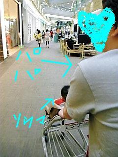 Image1176.jpg
