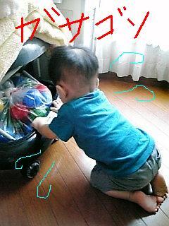 Image1210.jpg