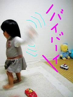 Image1286.jpg