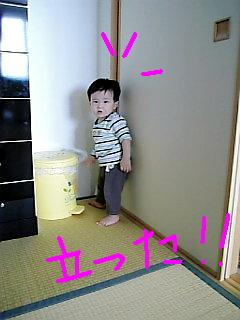 Image1293.jpg
