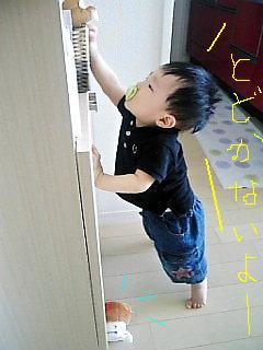 Image988~02.jpg