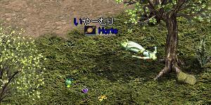 20070130013233.jpg