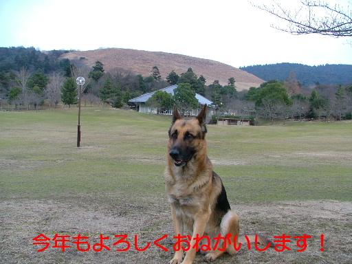 20070105225852.jpg