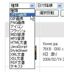 ファイル形式、拡張子を指定する
