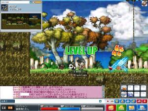 Maple0144.jpg