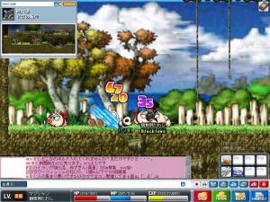 Maple0145.jpg