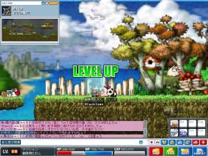 Maple0146.jpg