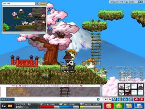 Maple0246.jpg