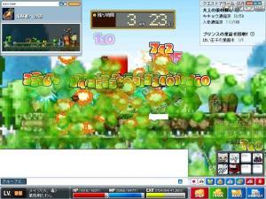 Maple0331.jpg