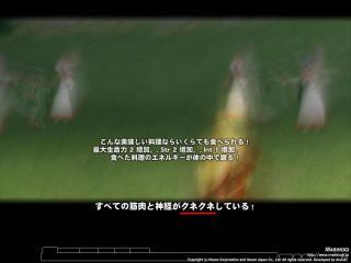 mabinogi_2007_02_05_022.jpg