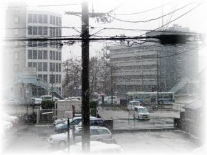 20070107雪