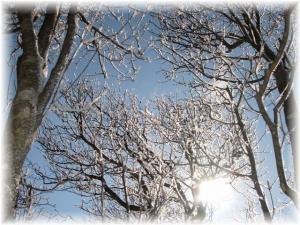 20070114プチ樹氷1□