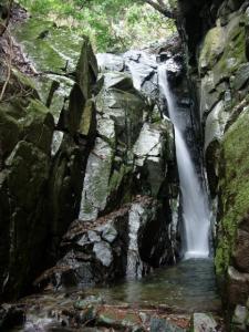 20070203竜頭の滝