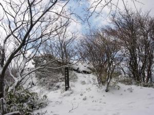 20070311ナギ-登り大神岩